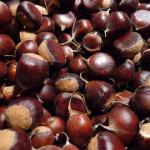 Chestnuts-72